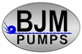 BJM electric submersible pumps